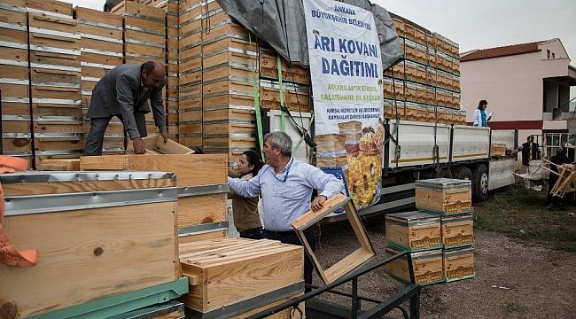 Ankara'da Bal Üretimi Artacak