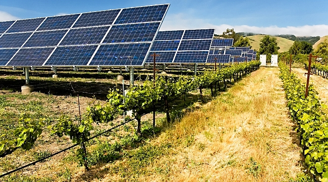 Ankara'da Güneş Enerjisinden Yöresel Ürünler Üretilecek