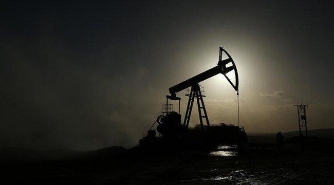 Petrol fiyatlarında Kovid-19 endişesi