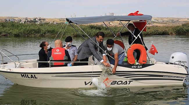 Ankara Mogan Gölü'nde 100 bin sazan bırakıldı