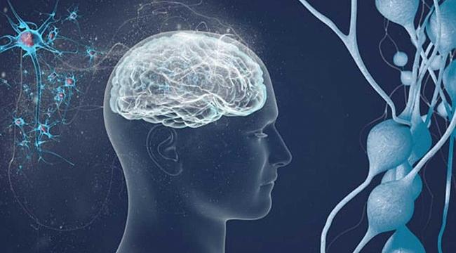 Beyin ve hafızayı güçlendirecek üç tavsiye